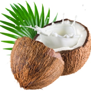 Kokosnoot smaak siroop